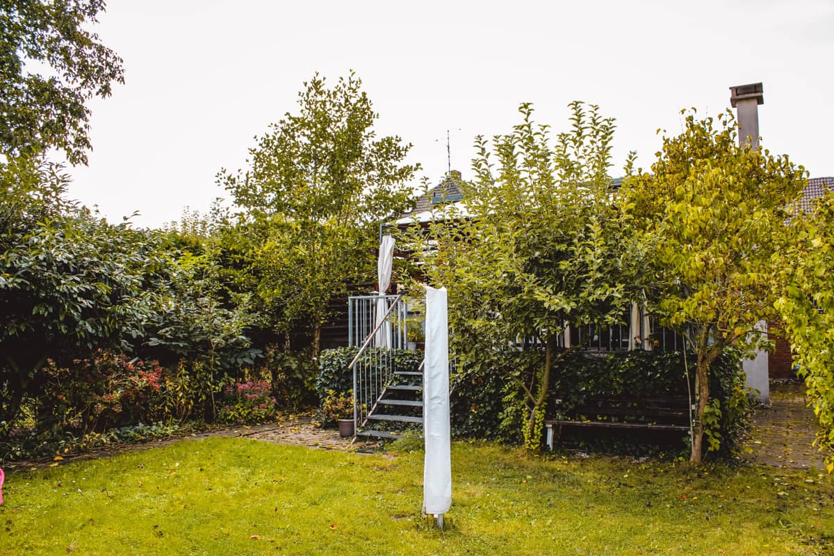 Garten / Rückansicht zur Terasse